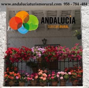 Inicio Andalucía Turismo Rural