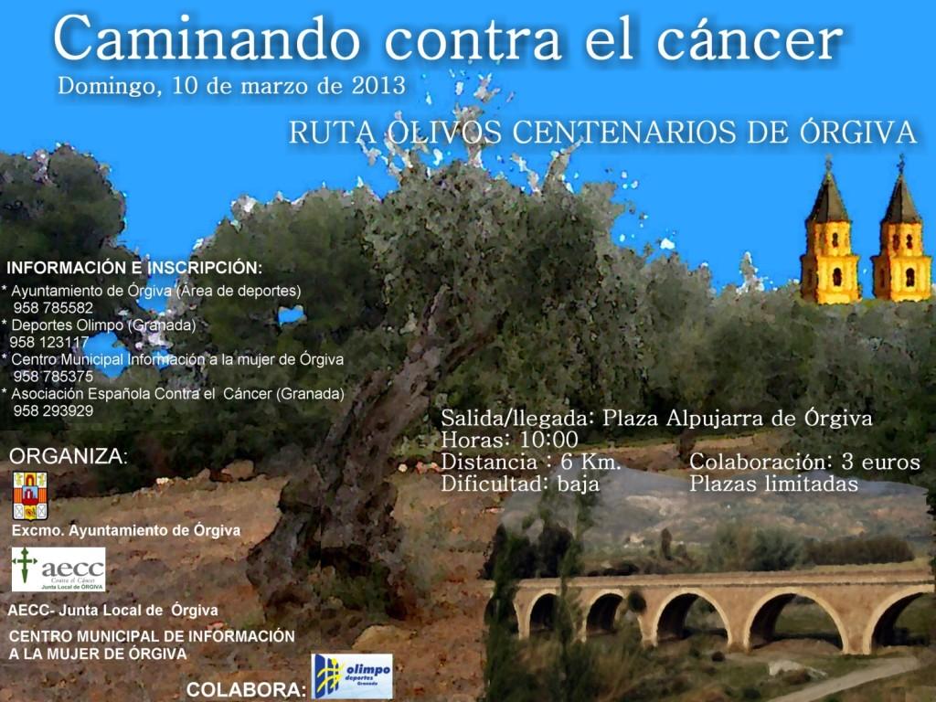Caminado contra el cáncer 2013